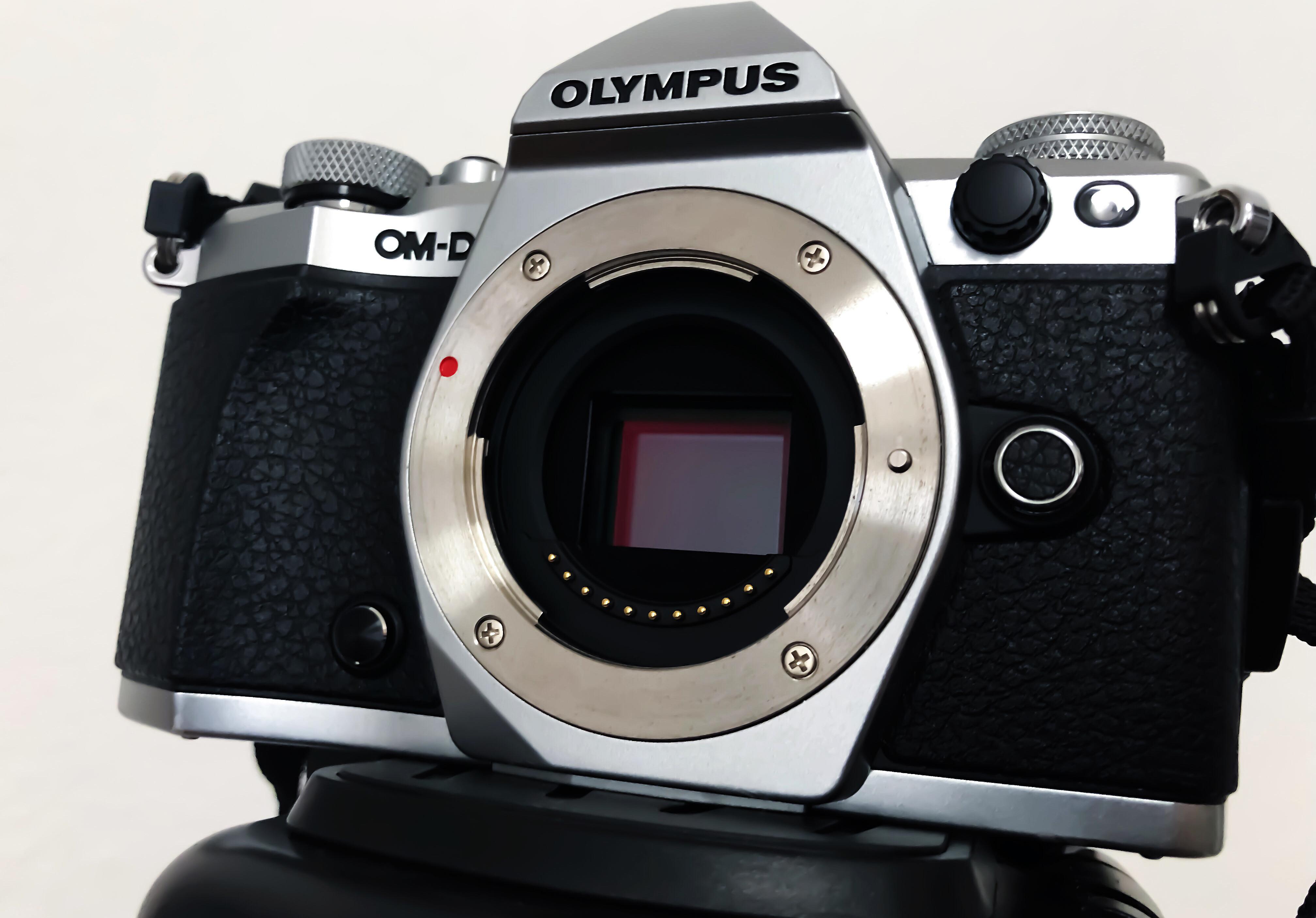 Why a MFT camera? - moabiterpflanze