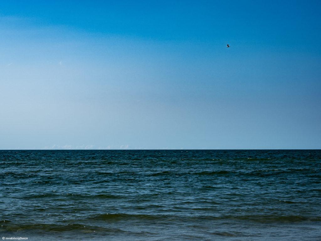 Wasser, Meer, Blau, Wellen, Himmel