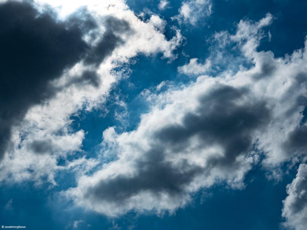 Himmel, Blau, Licht, Wolken, Weiß